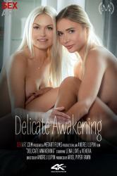 delicate-awakening_sexart.jpg