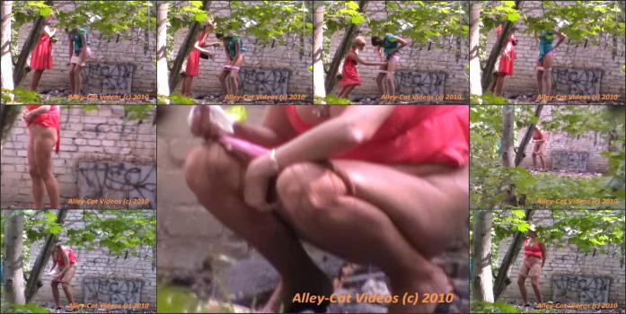 Alleycat13