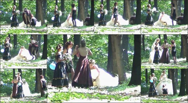 Nesmotry-WeddingPis 782-17-nev13group