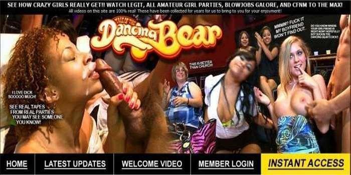 DancingBear (SiteRip) (SiteRip) Image Cover