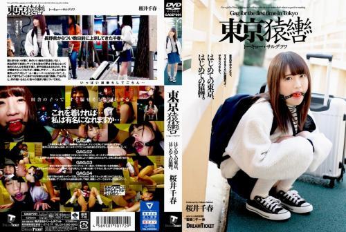 [GAGD-001] Sakurai Chiharu 東京猿轡 トーキョー・サルグツワ Bloomers 調教  2020-02-29