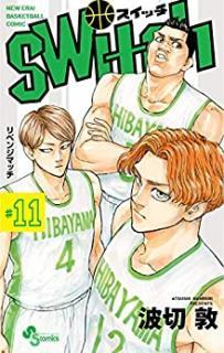 Switch 01-11